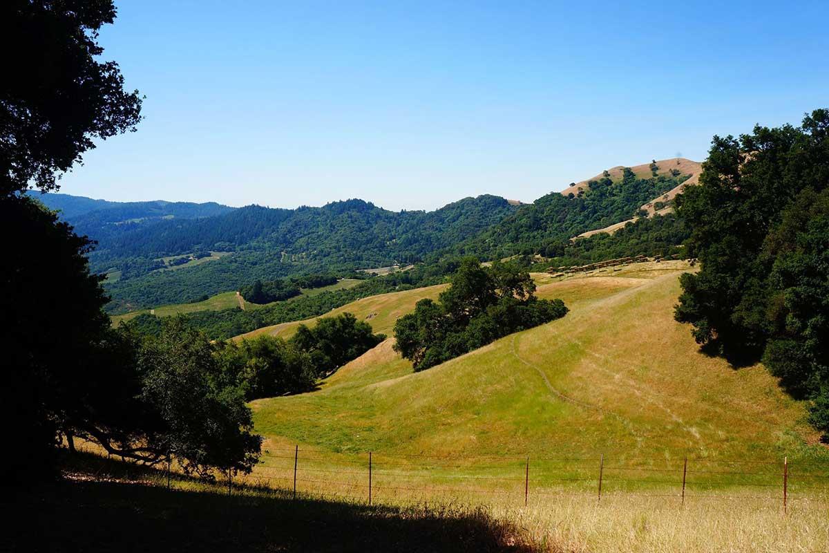Brushy-Peaks-Trail-via-Vista-Trail