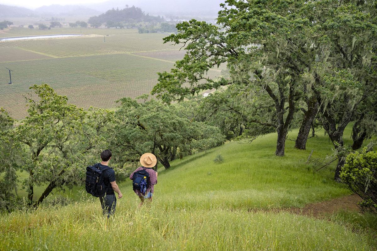 hiking-in-napa